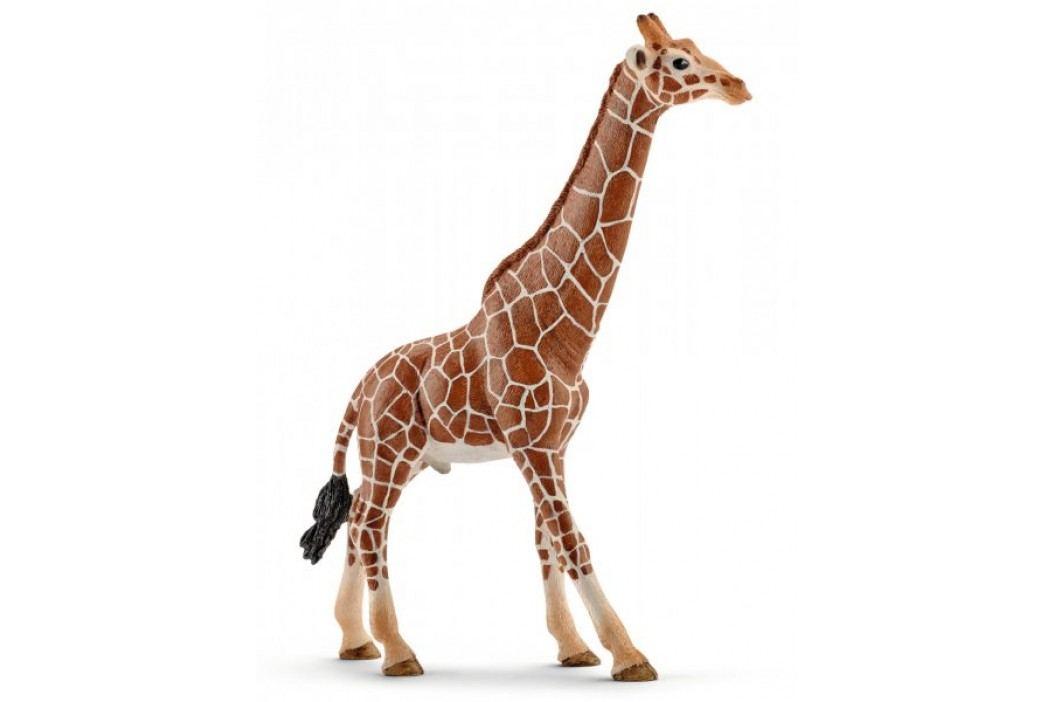 Schleich Samiec żyrafy Zwierzęta
