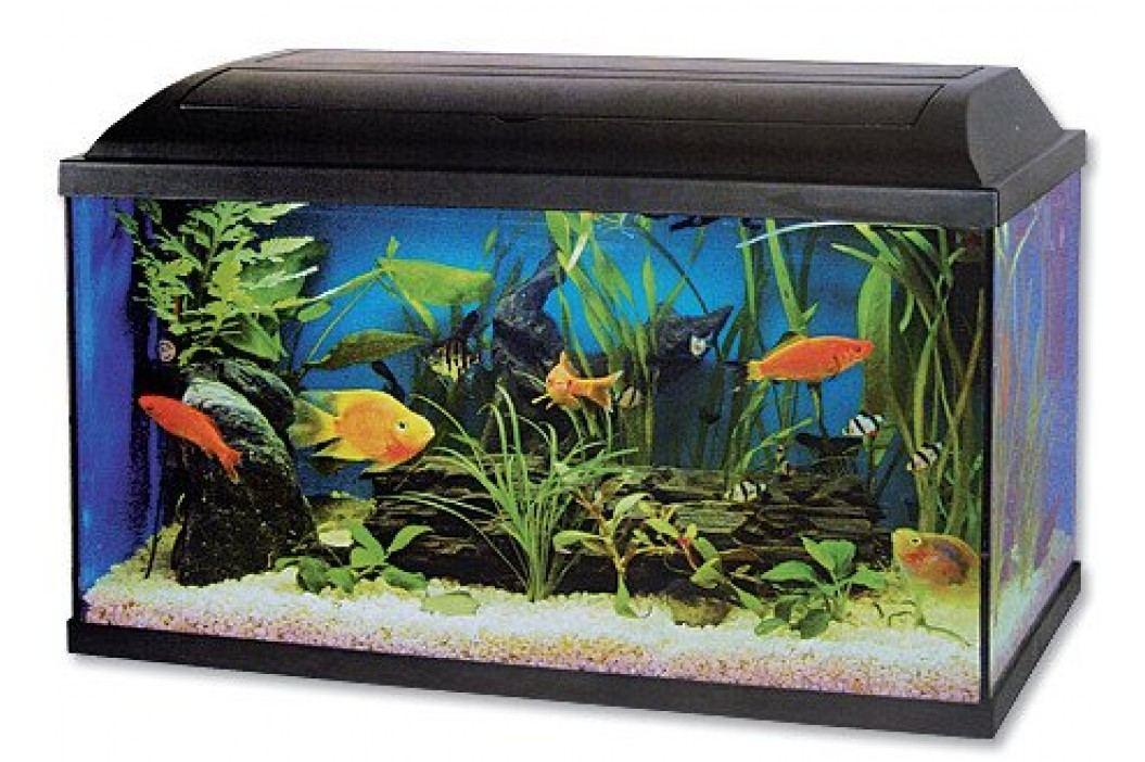 Cat-Gato akwarium zestaw - 80x30x40 cm Akwaria