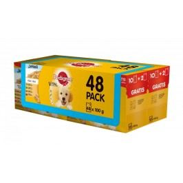 Pedigree Junior saszetki multipack 4 x (12 x 100g)