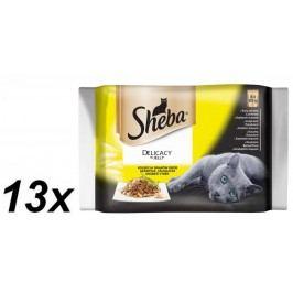 Sheba saszetki dla kota DELICACY in Jely dania drobiowe13 x (4x85g)