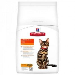 Hill's sucha karma dla kota SP Adult Light Chicken - 10 kg