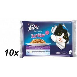 Felix saszetki dla kota Fantastic Junior multipack - kurczak i łosoś w galaretce, 10x (4 x 100g)
